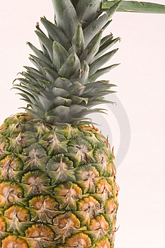 Pineapple Detail Free Stock Photography