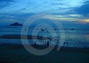 Blue Mystic Sunset Stock Images