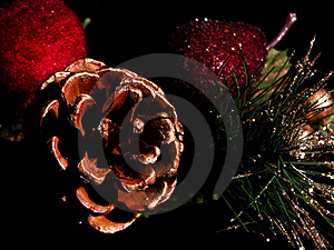Painted Pinecone on Black Stock Images