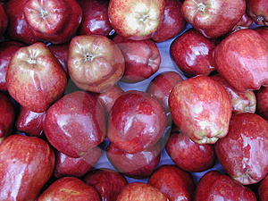 Apples Stock Image - Image: 36911
