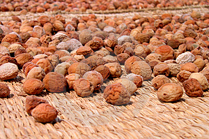 Dried Fruits Free Stock Images