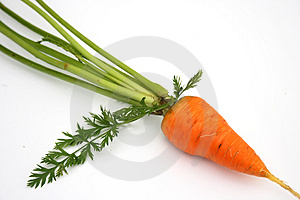 Carrots Free Stock Image