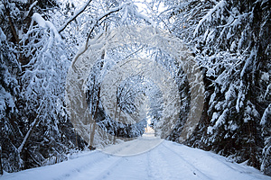 Winter Landscape Royalty Free Stock Photos - Image: 30090428