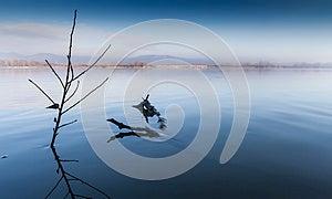 Riverbank Royalty Free Stock Photos - Image: 30162058