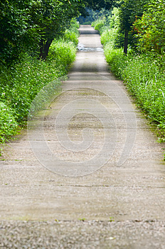 Garden Path Royalty Free Stock Photography - Image: 30399827
