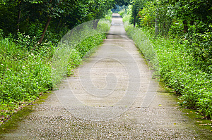 Garden Path Royalty Free Stock Photos - Image: 30399828