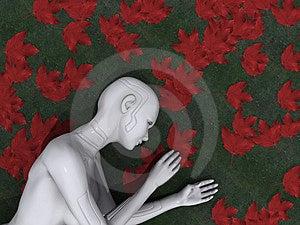 Harmonia Da Tecnologia E Da Natureza Fotografia de Stock Royalty Free - Imagem: 3057127