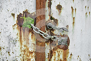 Rusty Gate Locked By Chains Royalty Free Stock Images - Image: 30516089