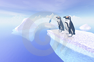 Penguin Royalty Free Stock Image - Image: 3074066