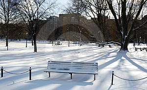 Bench In The Shadows Royalty Free Stock Images - Image: 316819