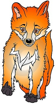 Sitting Fox Royalty Free Stock Images - Image: 3105509