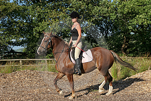 Upright Riding Posture Stock Photos - Image: 3131983