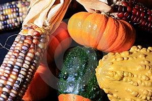 Autumn Harvest Royalty Free Stock Photography - Image: 3134307