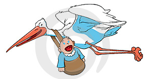 Stork carrying a baby Stock Photo