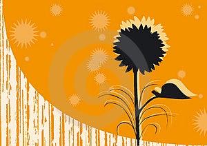 Oranje Achtergrond Royalty-vrije Stock Foto - Afbeelding: 3146165