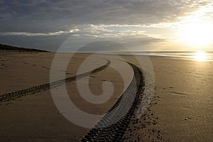 Tracks On A Beach Royalty Free Stock Photo - Image: 3193165