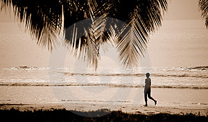 Woman Walking At The Beach Royalty Free Stock Image - Image: 3217336