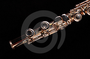 Transverse Flute Royalty Free Stock Photography - Image: 3307987
