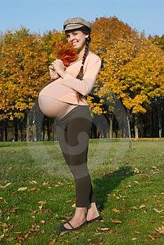 Pregnant female & autumn Stock Photos