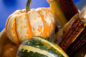 Harvest Stock Photo - Image: 3396840