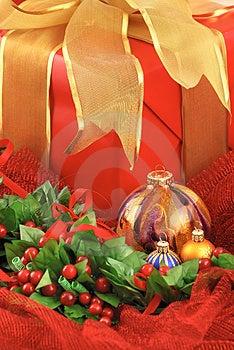 Christmas Joy Royalty Free Stock Photos