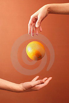 Hands And Orange Royalty Free Stock Images - Image: 3440189