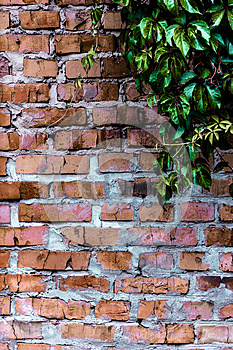 Texture and background (brick wall) Stock Photos