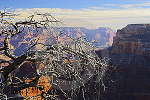 Grand Canyon Royalty Free Stock Photos - Image: 3484428