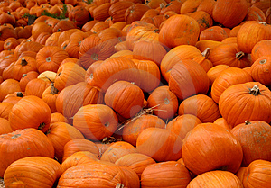 Mound Of Pumpkins Stock Images - Image: 3490464