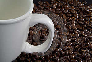 Coffee beans coffee cup Royalty Free Stock Photography