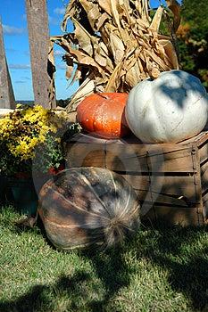 Harvest Stock Image - Image: 3514071