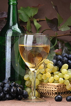 Wine composition White wine Stock Photos