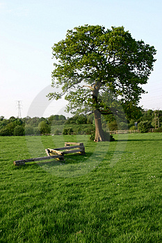 Stud Farm Meadow Stock Photos - Image: 3559013