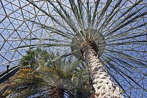 Botanic Gardens Stock Photography - Image: 3580212
