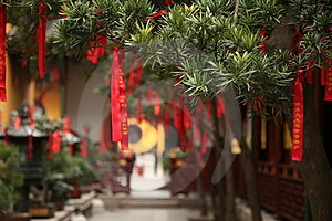Chinese Red Ribbons On Trees Royalty Free Stock Photos - Image: 3602238