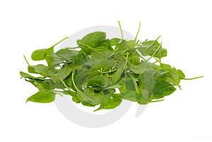 Foglie fresche degli spinaci Fotografia Stock Libera da Diritti