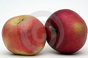 Apple  fruit-piece Stock Image