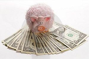 Banknote Royalty Free Stock Image - Image: 3639446