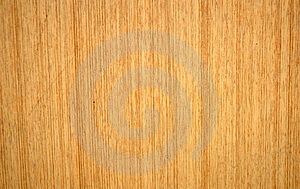 La textura de la madera de fondo.