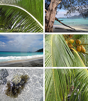 Tropical Installation. Seychelles Stock Images - Image: 3644314