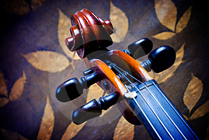 Violin Details Royalty Free Stock Photo - Image: 3655555