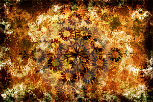 Grunge Background With Flowers And Scratches Stock Photography - Image: 3666882