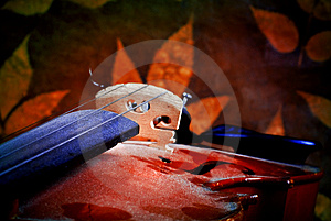 Violin Details Royalty Free Stock Photography - Image: 3675237