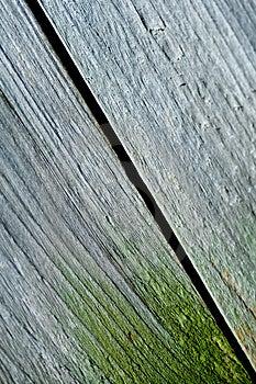 Stock Photo - Wood texture
