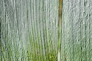 Stock Images - Old wood texture