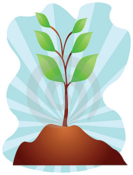 Young Plant Illustration Stock Images - Image: 3798674