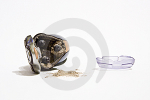 Shaver Royalty Free Stock Photography - Image: 3806947