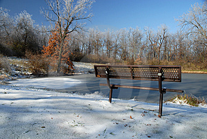 Frozen Park Royalty Free Stock Photo - Image: 3860715