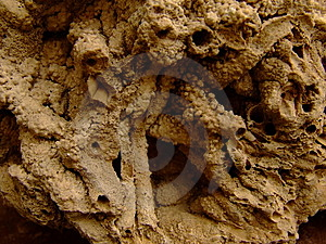 Stone Texture Royalty Free Stock Photography - Image: 3861857