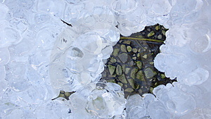 Ice On Stones Royalty Free Stock Images - Image: 3887119